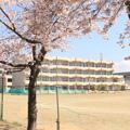 東向陽台中学校